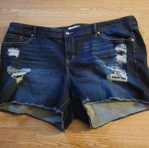 Torrid Skinny Short Dark Wash Shorts 4x